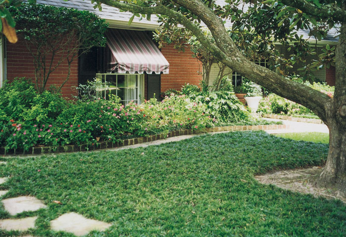 Millers Ground Cover Home Lariopie Specials Links